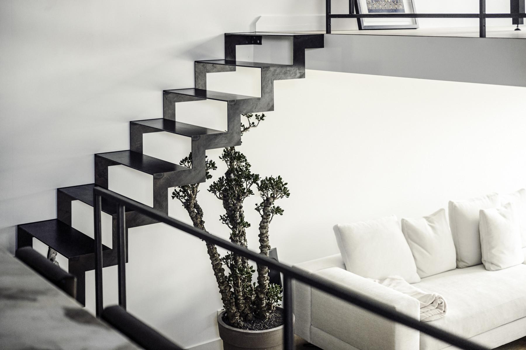 ich w rde gerne wissen wie die pflanze auf dem bild hei t. Black Bedroom Furniture Sets. Home Design Ideas
